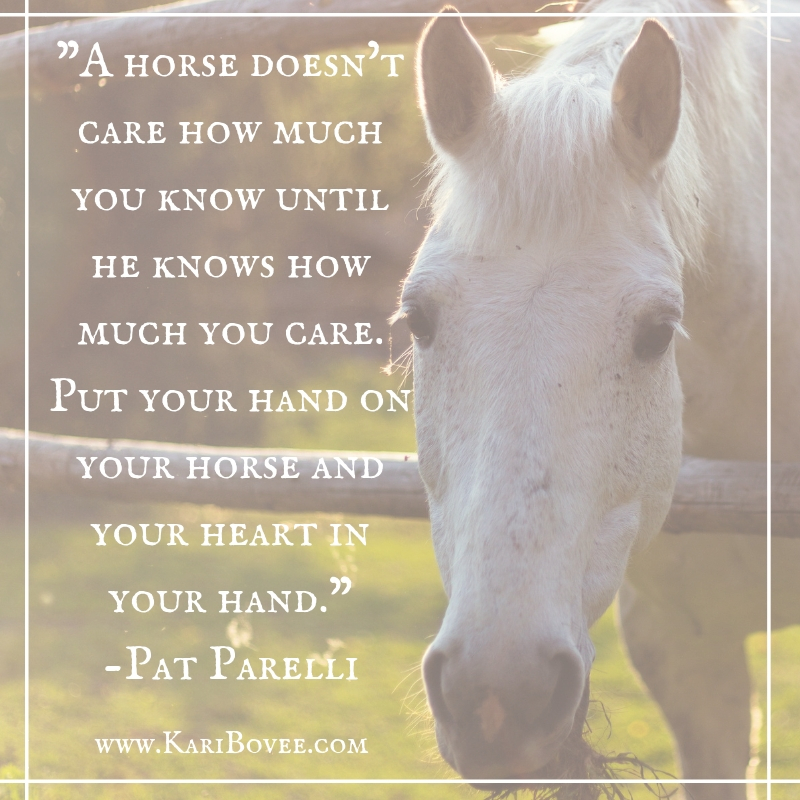 A horse doesn't care how much you know until he knows how much you care. Put your hand on your horse and your heart in your hand.Pat Parelli