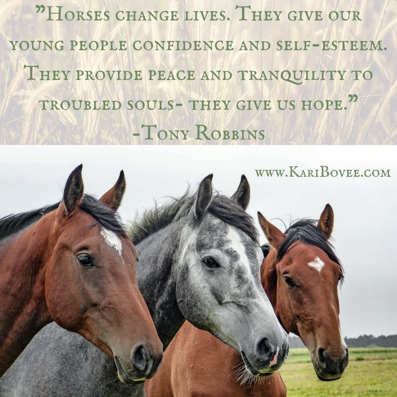 horses change lives. They give our young people confidence and self-esteem. They provide peace and tranquility to troubled souls - they give us hope.